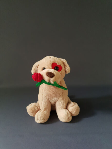 Λούτρινος σκύλος με τριαντάφυλλο - 10€