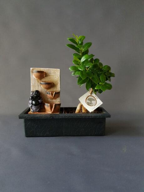 Bonsai Συντριβάνι - 80€